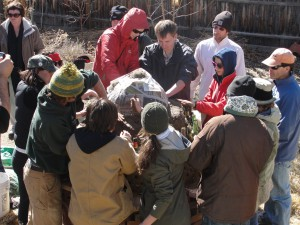 Project #3: Permaculture Education